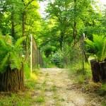 Joga w Odonowie