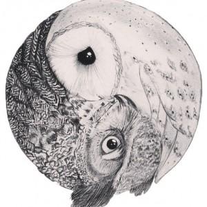 yin-yang-sowy